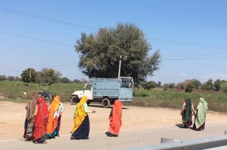india 0563 (1)