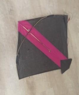 kite 0889 (1)